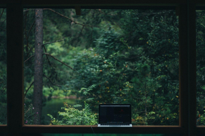 laptop woods